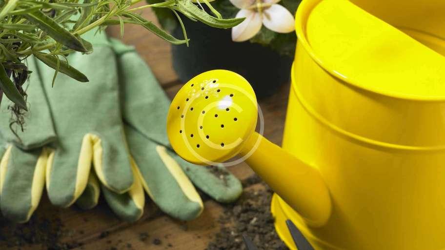 Other Gardening Supplies