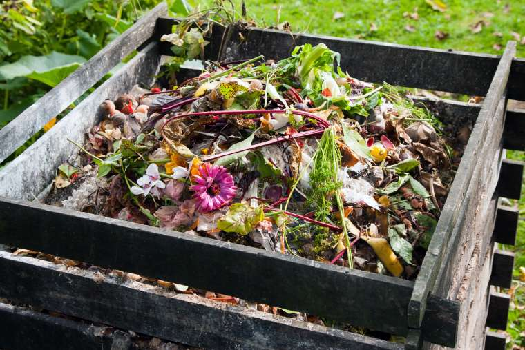 The ABC's of Composting