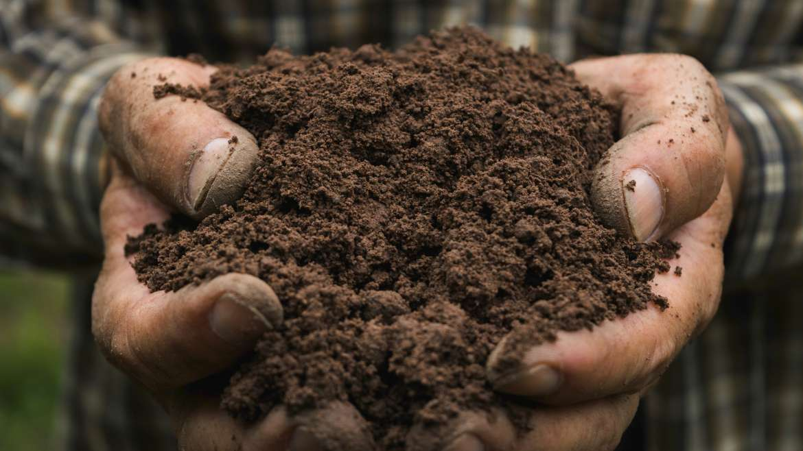 Dirt vs. Soil + Rich Soil Recipe