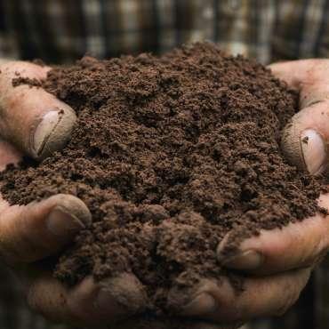 Bag Potting Soils / Mulches
