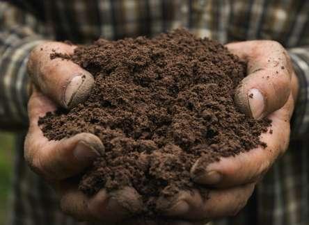 Dirt vs. Soil + Rich Soil Recipe
