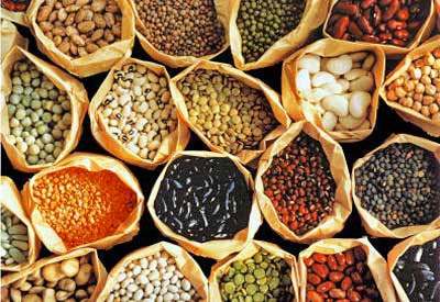 Saving your own garden seed? What you can and can't save!